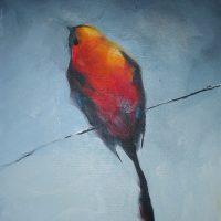 11x14 redbird