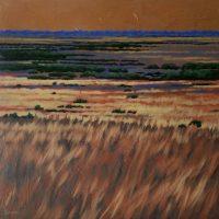 Paynes Prairie 20x20