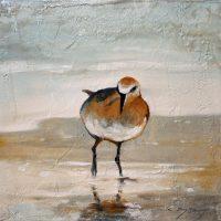 Rysavy Bird 1