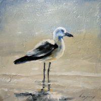 Rysavy Bird 2