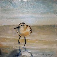 Rysavy Bird 3